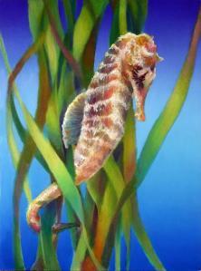 seahorse-i-among-the-reeds-nancy-tilles