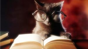 improve-my-writing-skills-cat-reading-book