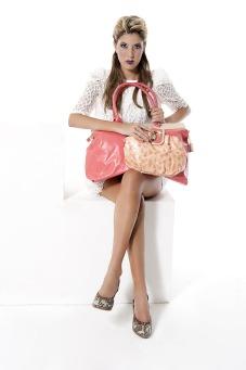 handbag-1107716_1920