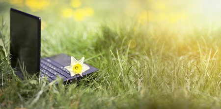 58579789 - website banner of a laptop with spring flower